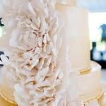 amanda-travis-married-mccaw-wed-order-file-0453-jpg